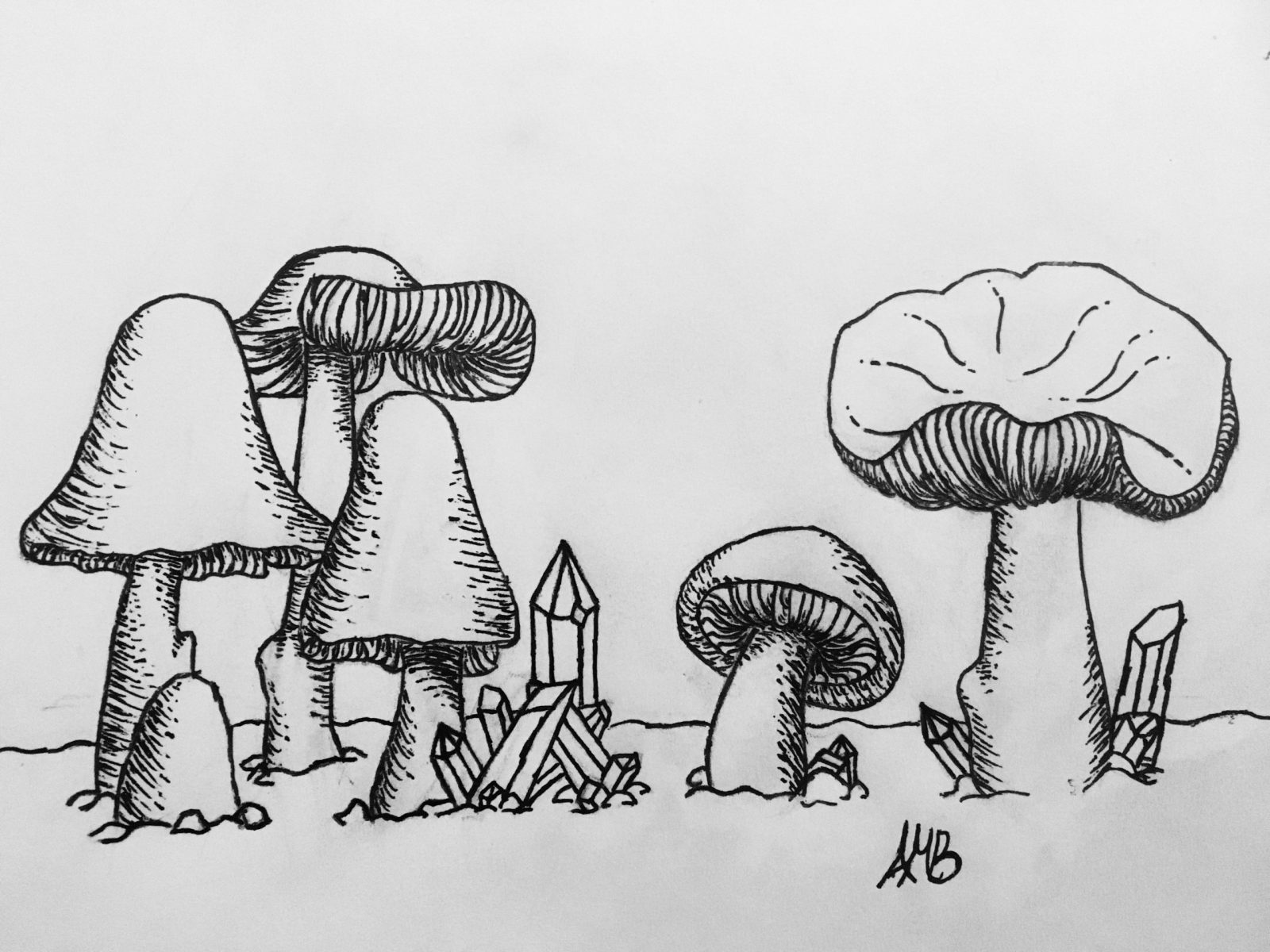 An ink drawing of mushrooms and crystals