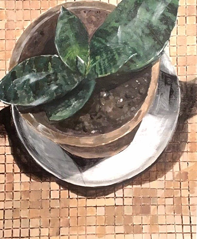 A painting of a plant in a pot viewed from above